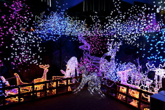 Outdoor Christmas light scene depicting reindeer